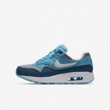 Nike Air Max 1 Lifestyle Shoes For Boys Wolf Grey/Light Blue Fury/Blue Force/White 331SARXT