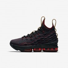 Nike LeBron 15 Basketball Shoes For Boys Dark Atomic Teal/Team Red/Muted Bronze/Ale Brown 575CIHSD