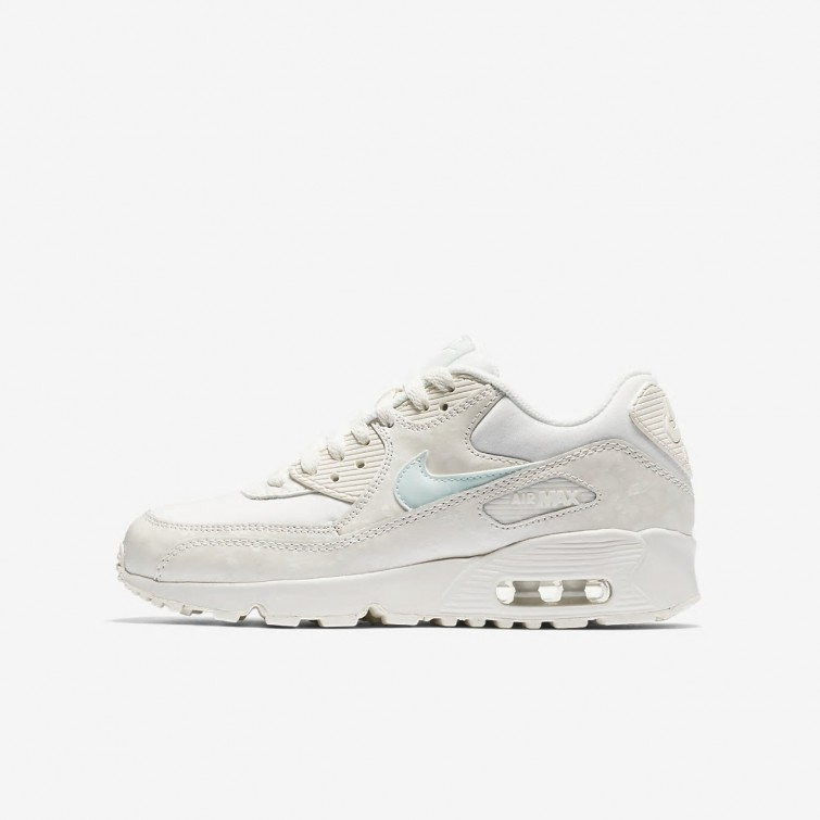 reputable site 3f444 8e8eb Nike Air Max 90 Clearance Sale, Lifestyle Shoes Girls Sail/Igloo