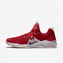 Nike Zoom Train Command Training Shoes For Men Gym Red/Vast Grey/Gum Medium Brown/Deep Burgundy 219FXMWH