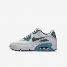 Nike Air Max 90 Leather Lifestyle Shoes For Boys Pure Platinum/Noise Aqua/Dark Grey/Cool Grey 828GPMVE